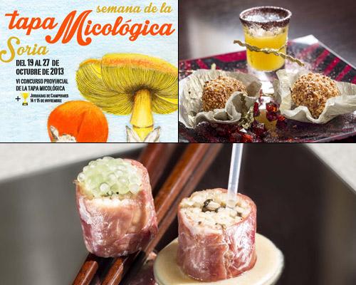 semana_micologia_soria