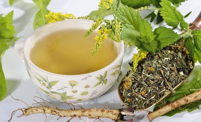Adelgazar con plantas medicinales?