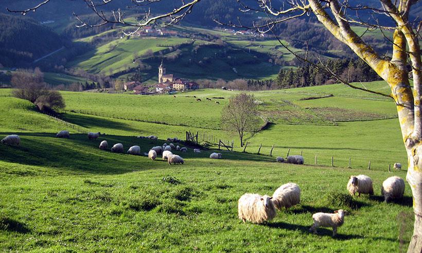 Siete experencias auténticas para vivir en Gorbeia, el corazón verde del País Vasco