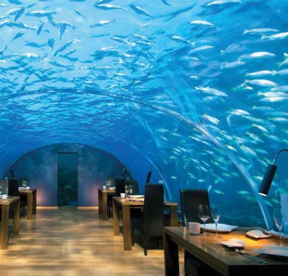 Hoteles bajo el agua for Hotel bajo el agua precio