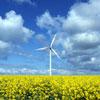 Reduciendo CO2: cómo cuidar el medio ambiente sin cambiar de vida