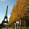 La Torre Eiffel se vestirá de verde como símbolo ecológico