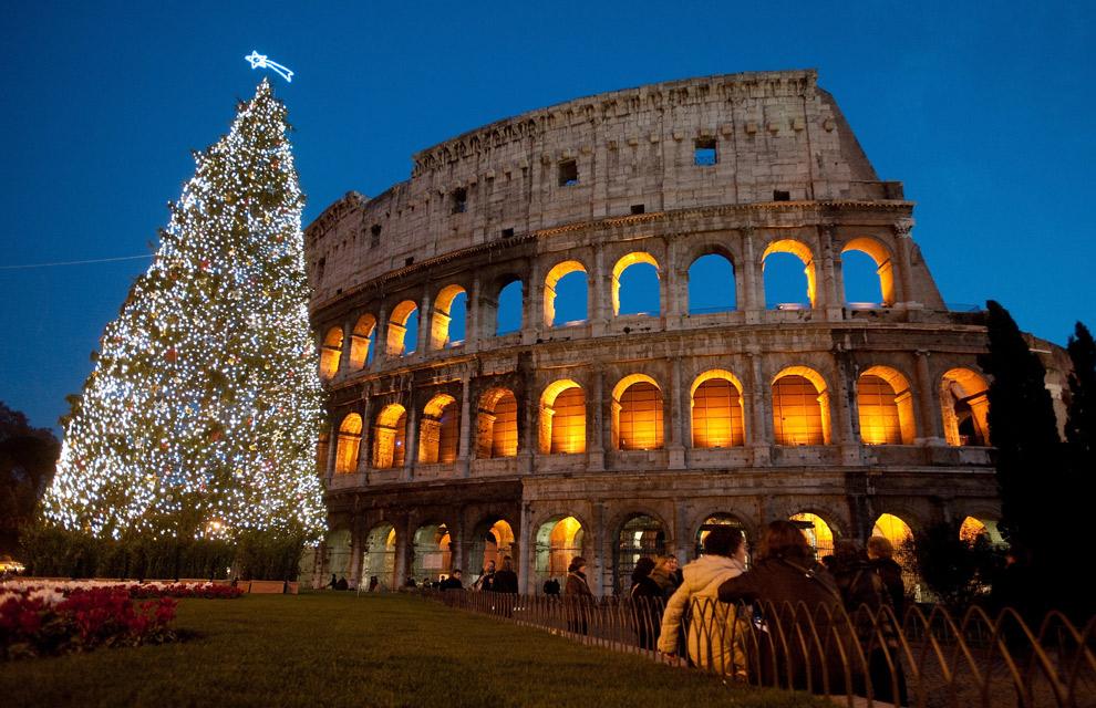un enorme rbol de navidad iluminado junto al coliseo de roma en italia