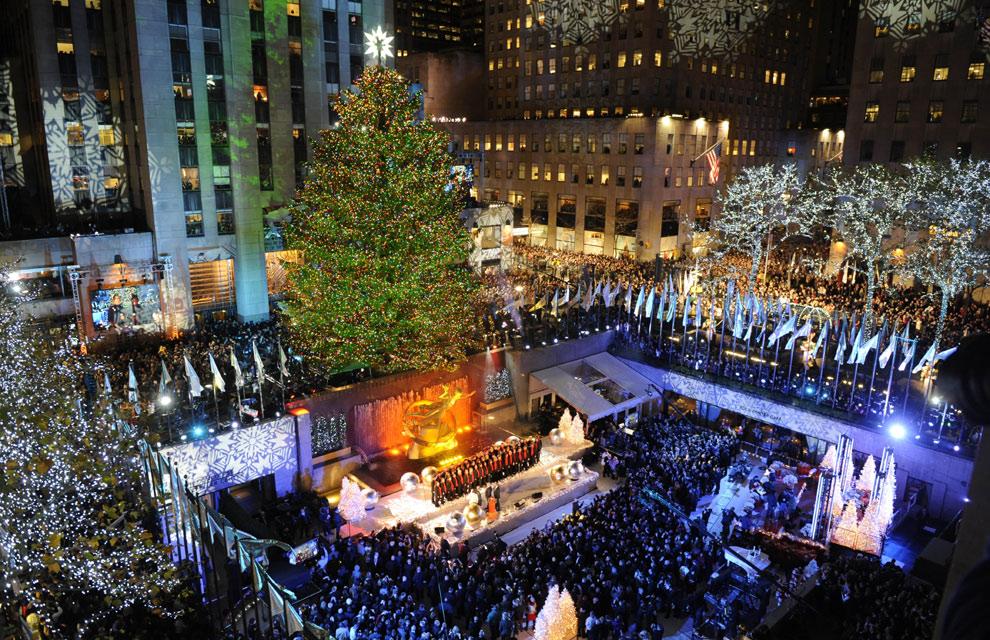 arboles de navidad iluminados