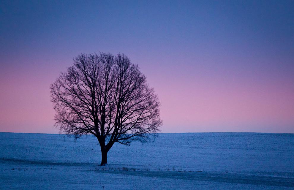 Las imágenes invernales más espectaculares, en fotos a toda pantalla