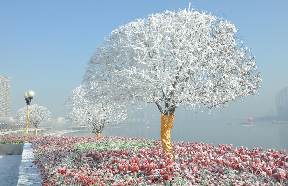 Las im genes invernales m s espectaculares en fotos a for Imagenes de patios de invierno