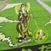 Dibujando en los campos de arroz de Japón