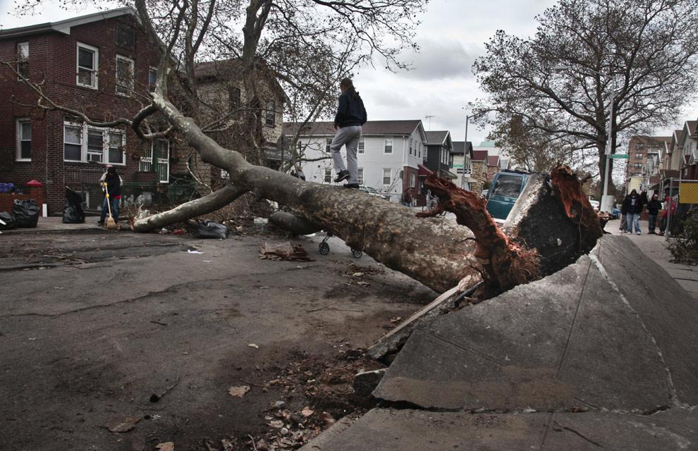 La solidaridad se instala en Nueva York tras el paso de Sandy