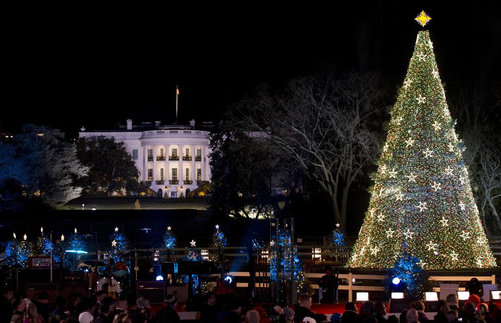 Las luces de navidad que iluminan el mundo - Luces arbol navidad ...