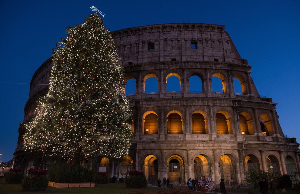 roma un enorme rbol de navidad iluminado junto al coliseo de la ciudad eterna