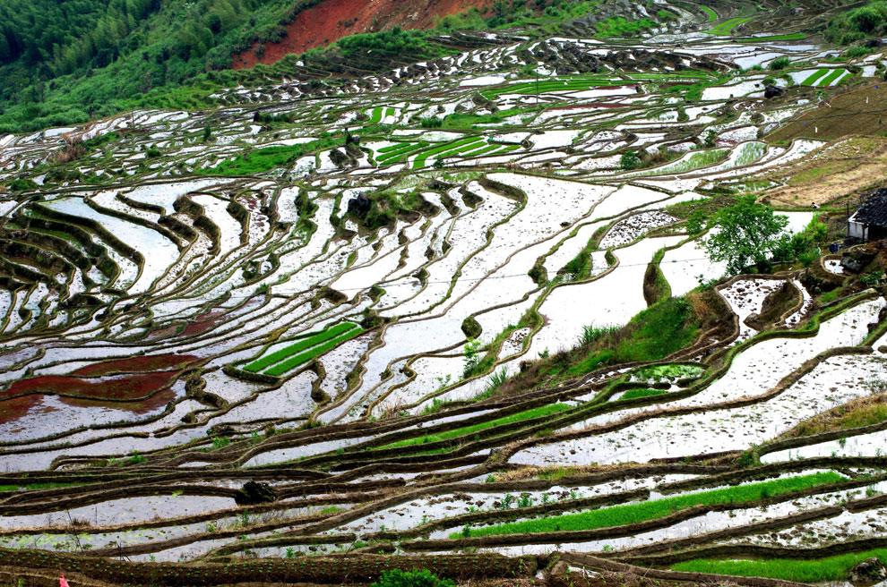 Sanming China  city images : Aunque el lugar es perfecto para fotografiar durante todo el año, la ...