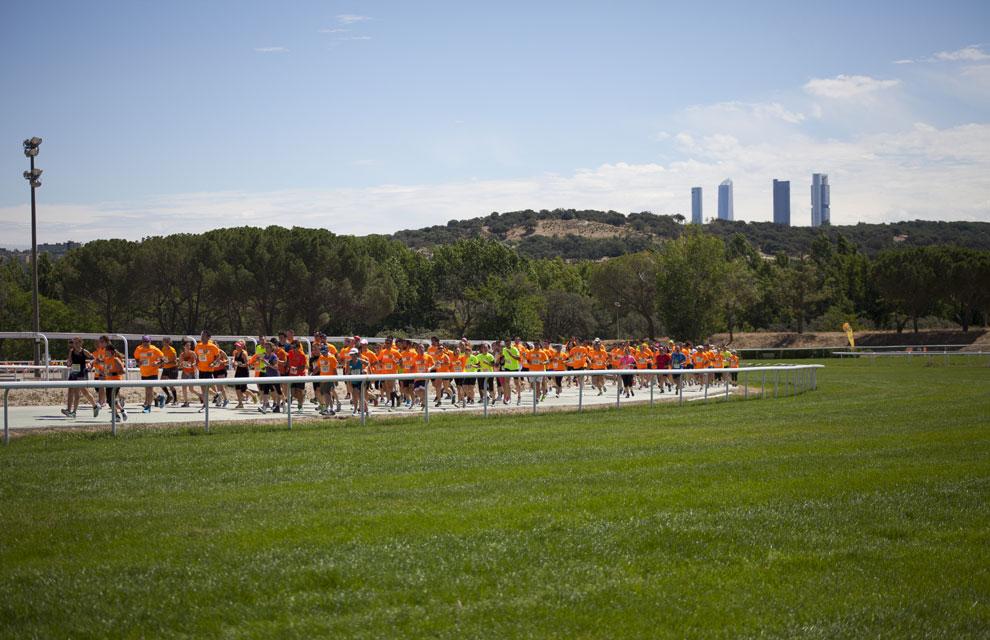 Corriendo como caballos en el Hipódromo