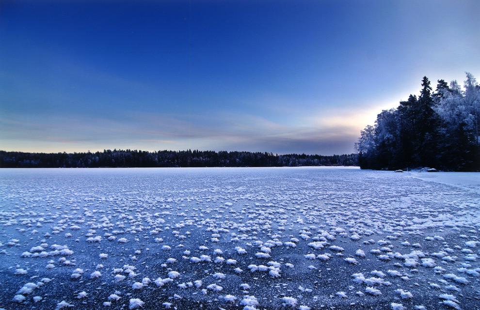 El insólito fenómeno de las 'flores de hielo'