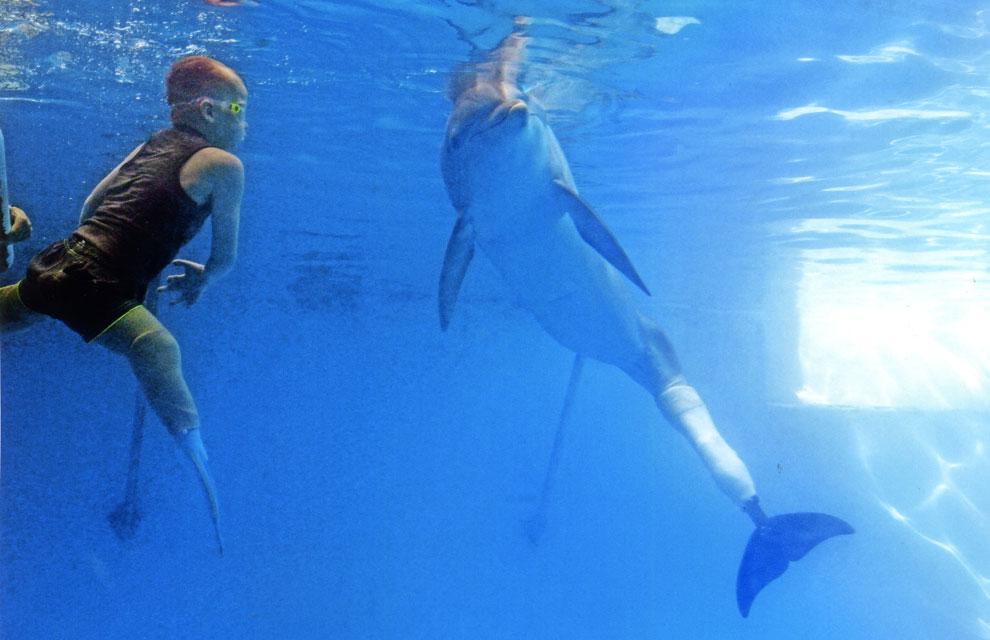 Un delfín sin cola enseña a nadar a un niño sin piernas