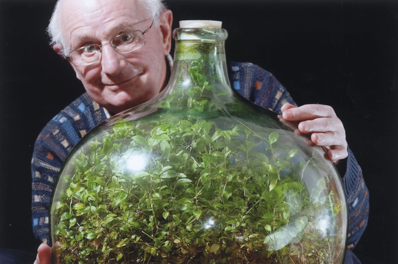 Una planta sobrevive 53 años encerrada