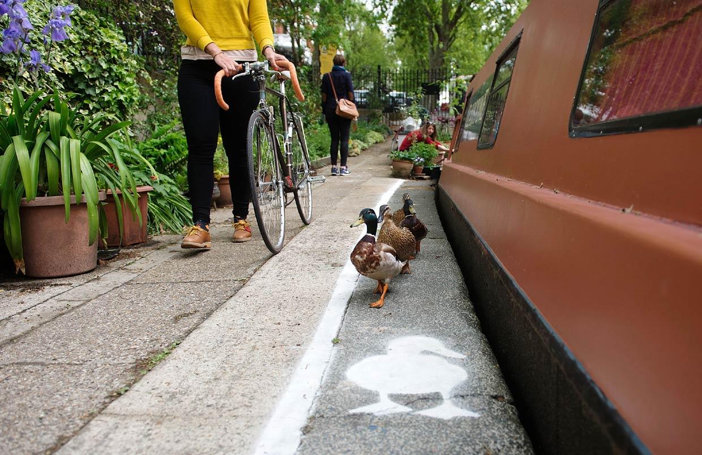 Llega a Londres… ¡el 'carril pato'!