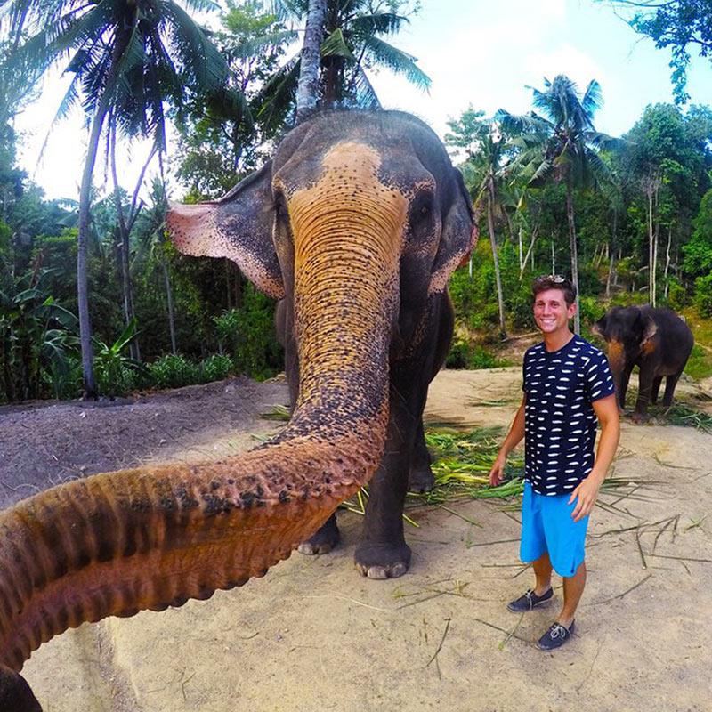 Un elefante se hace su propio 'selfie'