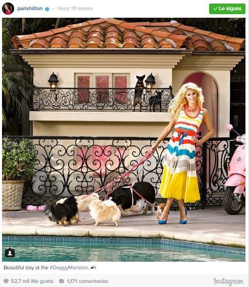 Ni te imaginas c mo es la espectacular mansi n para perros for Ahuyentar perros del jardin