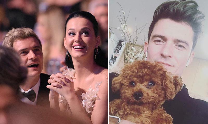 Orlando Bloom y Katy Perry han tomado una decisión, pero esta imagen ya nos hace dudar