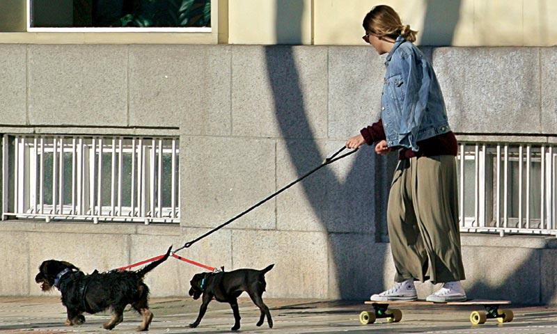 Blanca Suárez inventa un divertido deporte, el 'skate dog', ¿sabes cómo se practica?