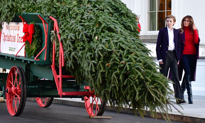 Después de ocho años con Michelle Obama... Melania Trump y su hijo reciben por primera vez el árbol de Navidad
