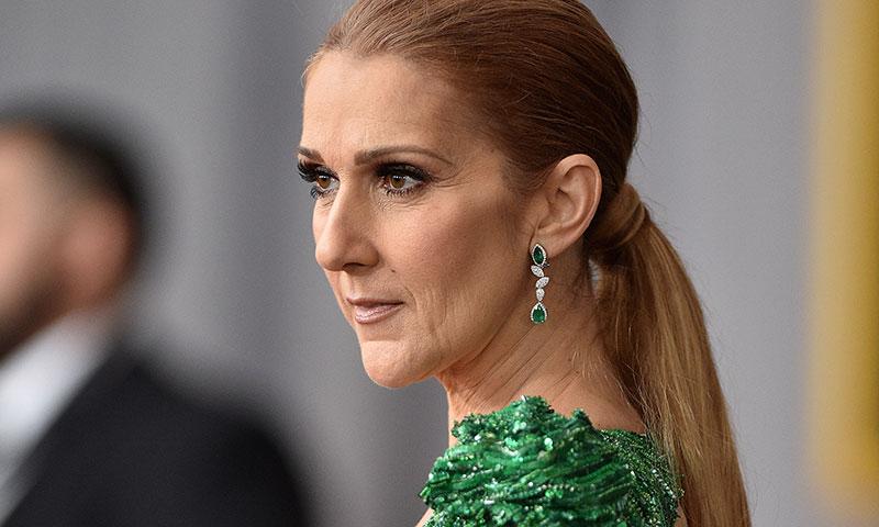 Los representantes de Céline Dion le reclaman más de 440 millones de euros