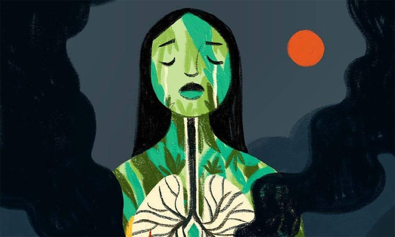 Paula Echevarría, Cristina Pedroche, Miguel Ángel Silvestre… las redes lloran por el Amazonas