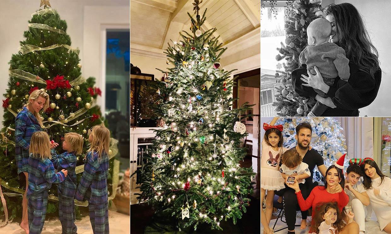 FOTOGALERÍA: Alejandra Gere, la última en mostrar su espectacular árbol de Navidad