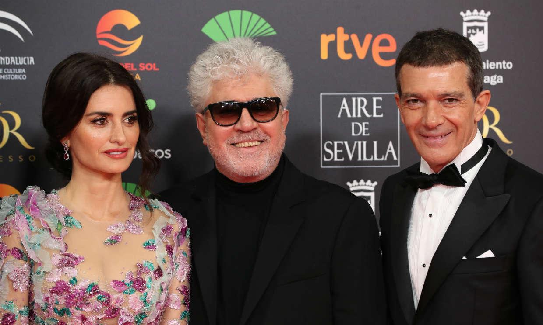 Penélope Cruz y Antonio Banderas protagonizarán una película ¡y no es de Almodovar!