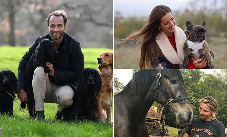 Caballos, cerditos, perros... Las 'celebrities' que han ampliado la familia con unas curiosas mascotas