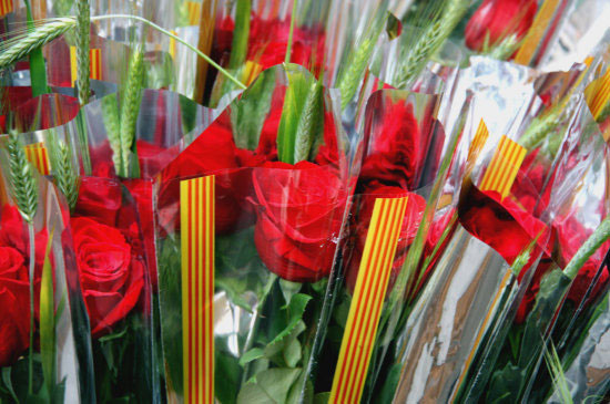 Los catalanes comprarán más de seis millones de rosas, un 20% más