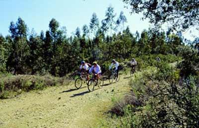 Los beneficios de montar en bicicleta