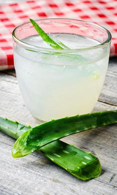 ¿Beber aloe vera en ayunas nos ayuda a perder peso?