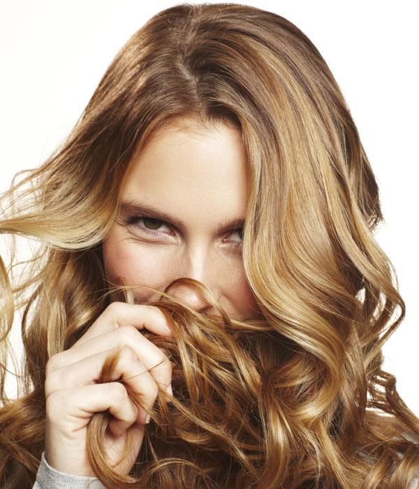Los aceites de la nuez de la propiedad y la aplicación para los cabellos