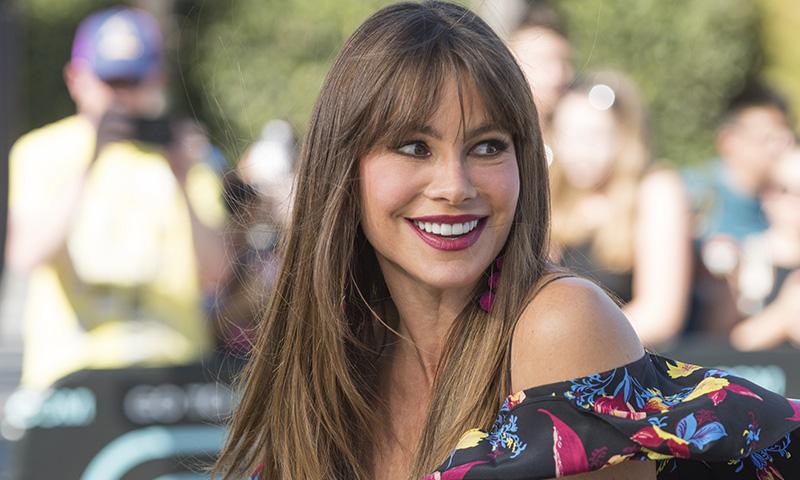 'Se llama envejecer': la genial respuesta de Sofía Vergara a un seguidor de Instagram