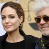 Angelina Jolie quiere ser la nueva 'chica Almodóvar'