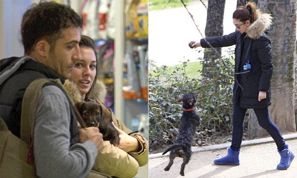 Toda la verdad sobre el 'caso Pistacho', el 'it-dog' de Blanca Suárez