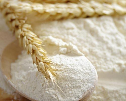 harina de trigo, trigo molido.