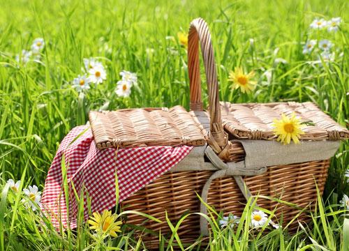 Día de picnic: ¿qué meto en la tartera?