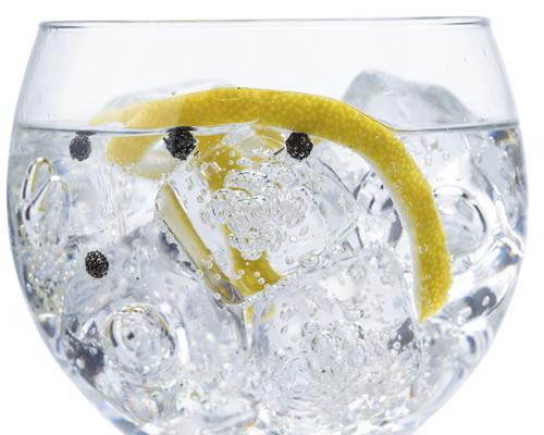 Un brindis para celebrar 'El día internacional del Gin tonic'