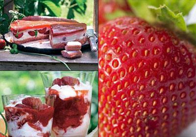 Fresas: saludables, aromáticas... ¡deliciosas!