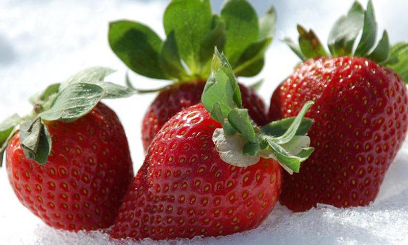 De temporada: postres que saben a fresa