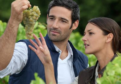 Un paseo por el mundo del vino y sus 'secretos'