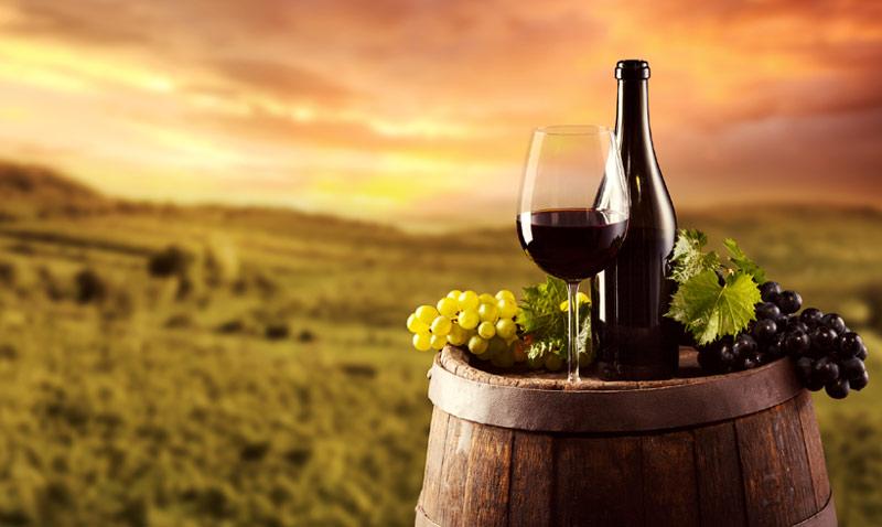 Ruta enoturística: los mejores planes para 'beberse' la vendimia