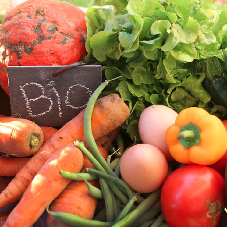 Productos ecol gicos biol gicos y org nicos qu - Luz de vida productos ecologicos ...