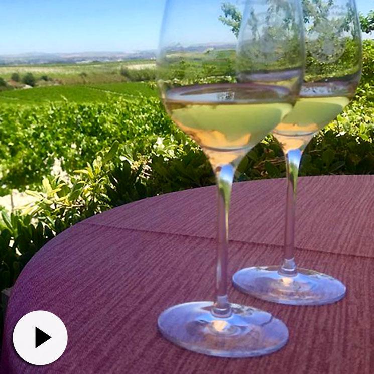 Tendencias 'gastro': ¿Aún no conoces los vinos de los que habla todo el mundo?