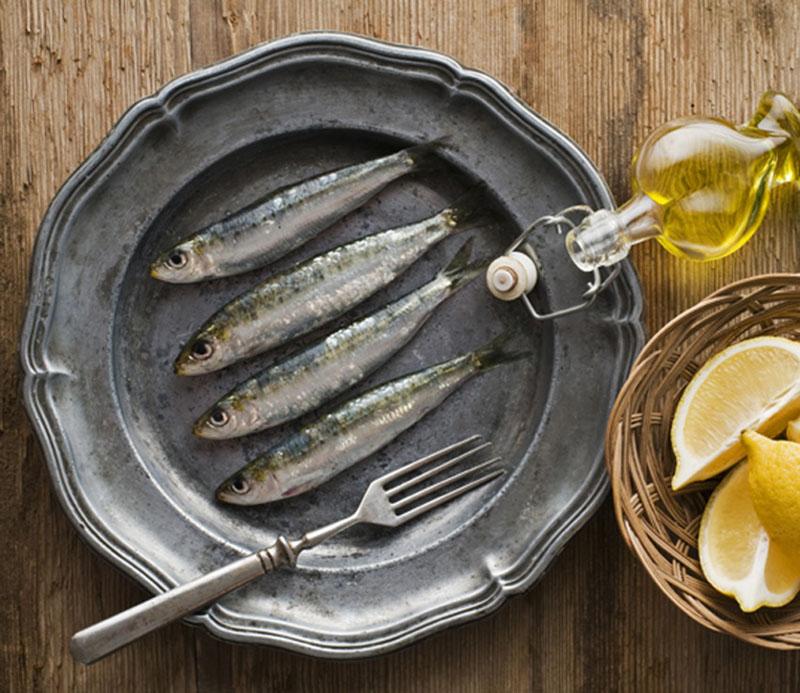 propiedades nutricionales de la sardina