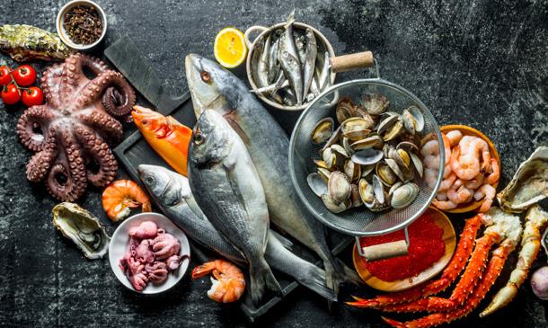 Pescados y mariscos, ¿hasta dónde llega el límite de su consumo?