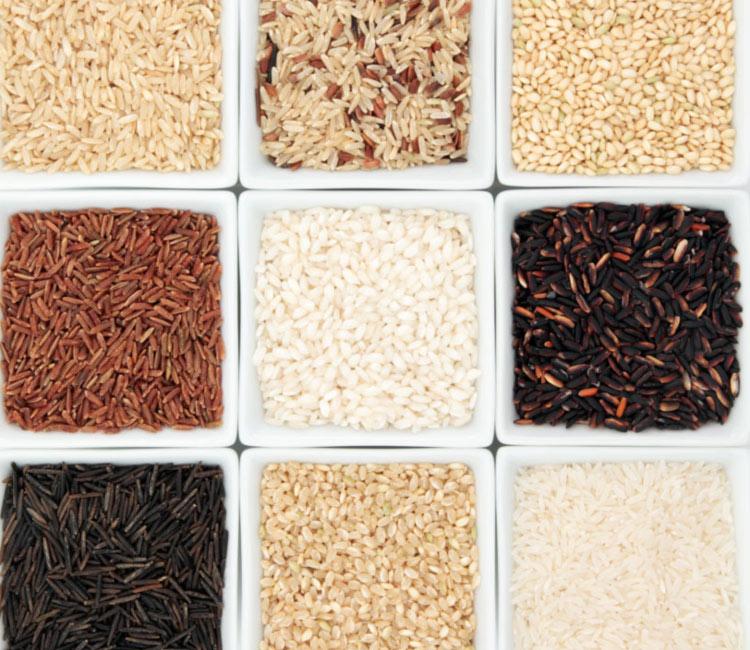 arroz-adobe-int