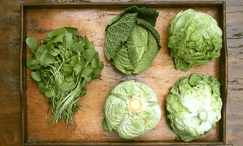 Con estos consejos, conservarás tus frutas y verduras en perfecto estado